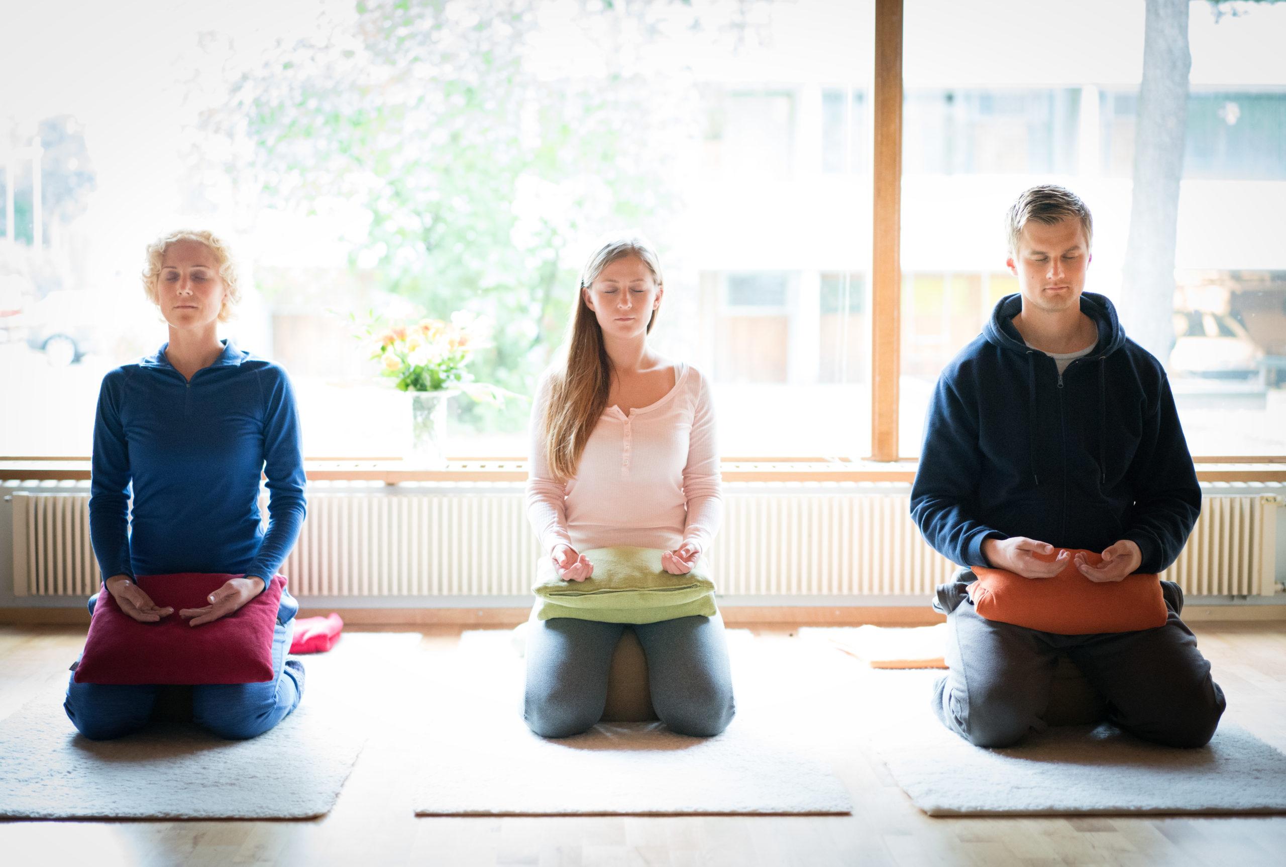 Mindfulness ohjaajakoulutus